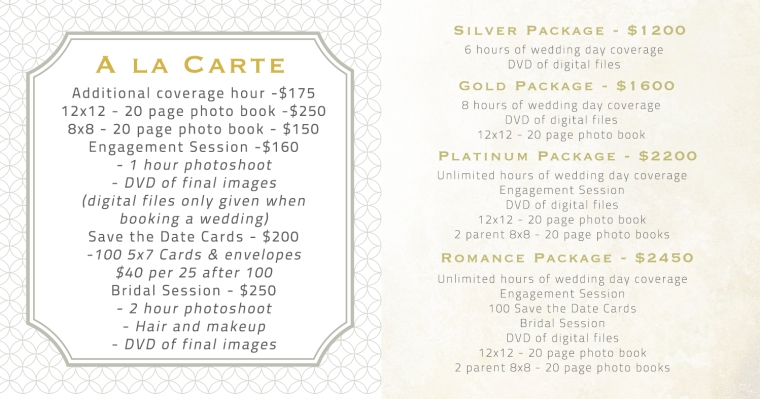 North Atlanta Wedding Photographer Prices